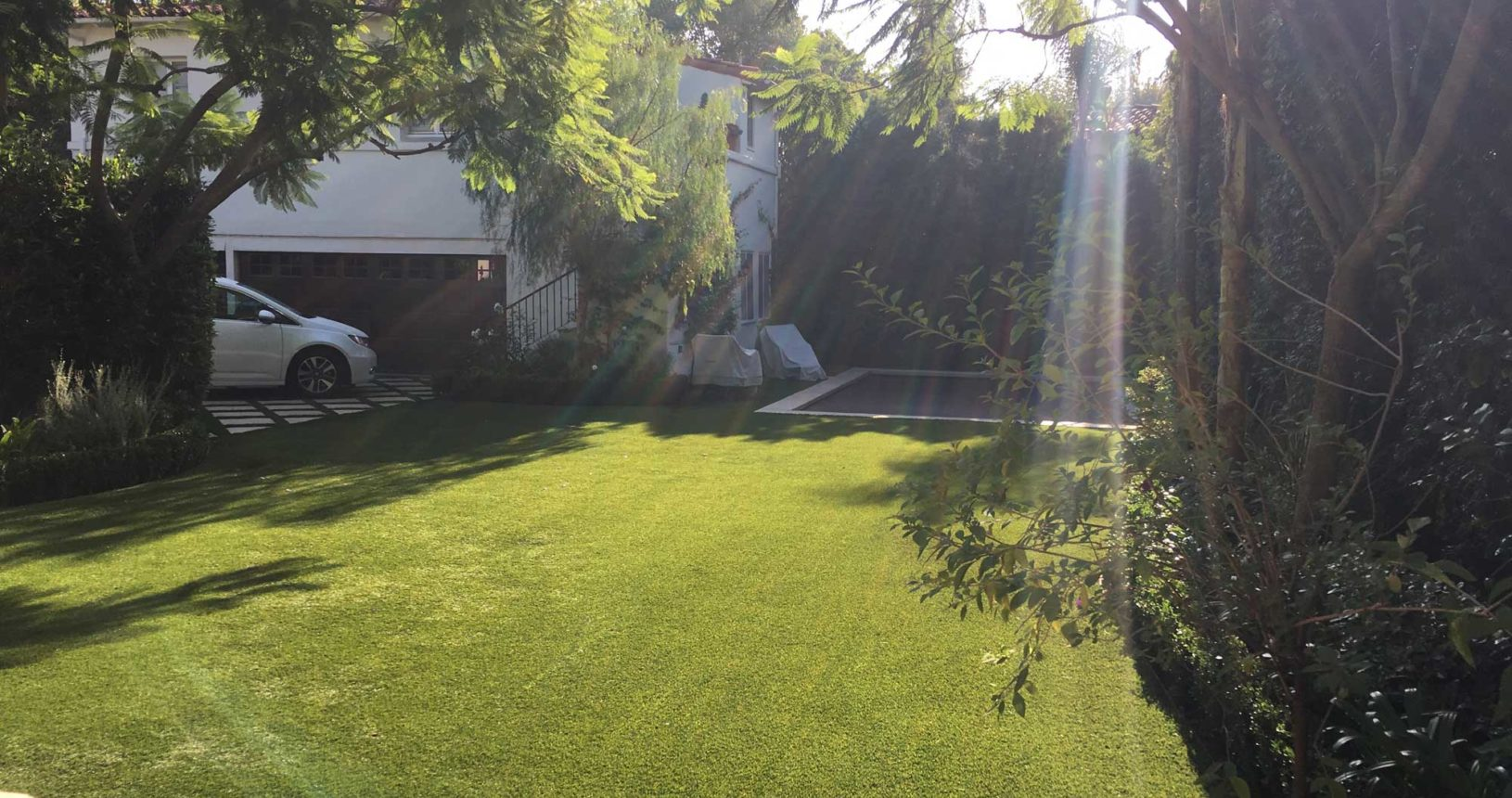 Complete Turf Lawn